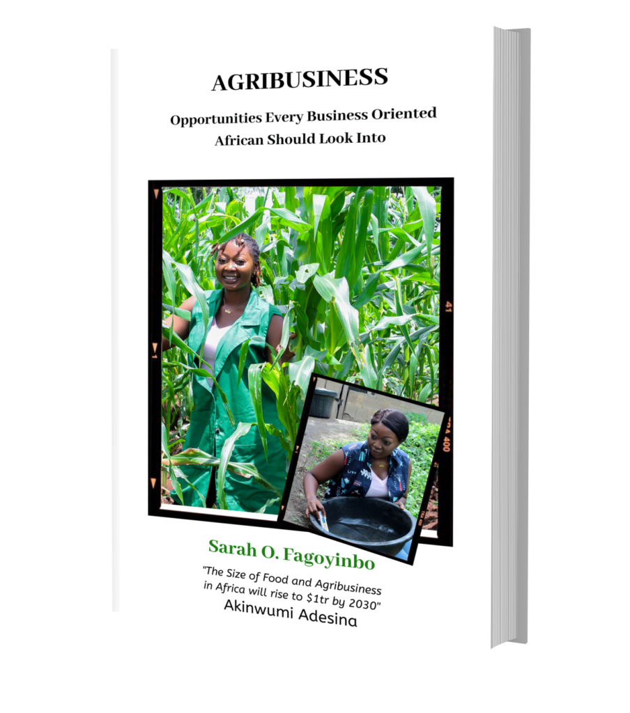 agribusiness by sarah olabisi